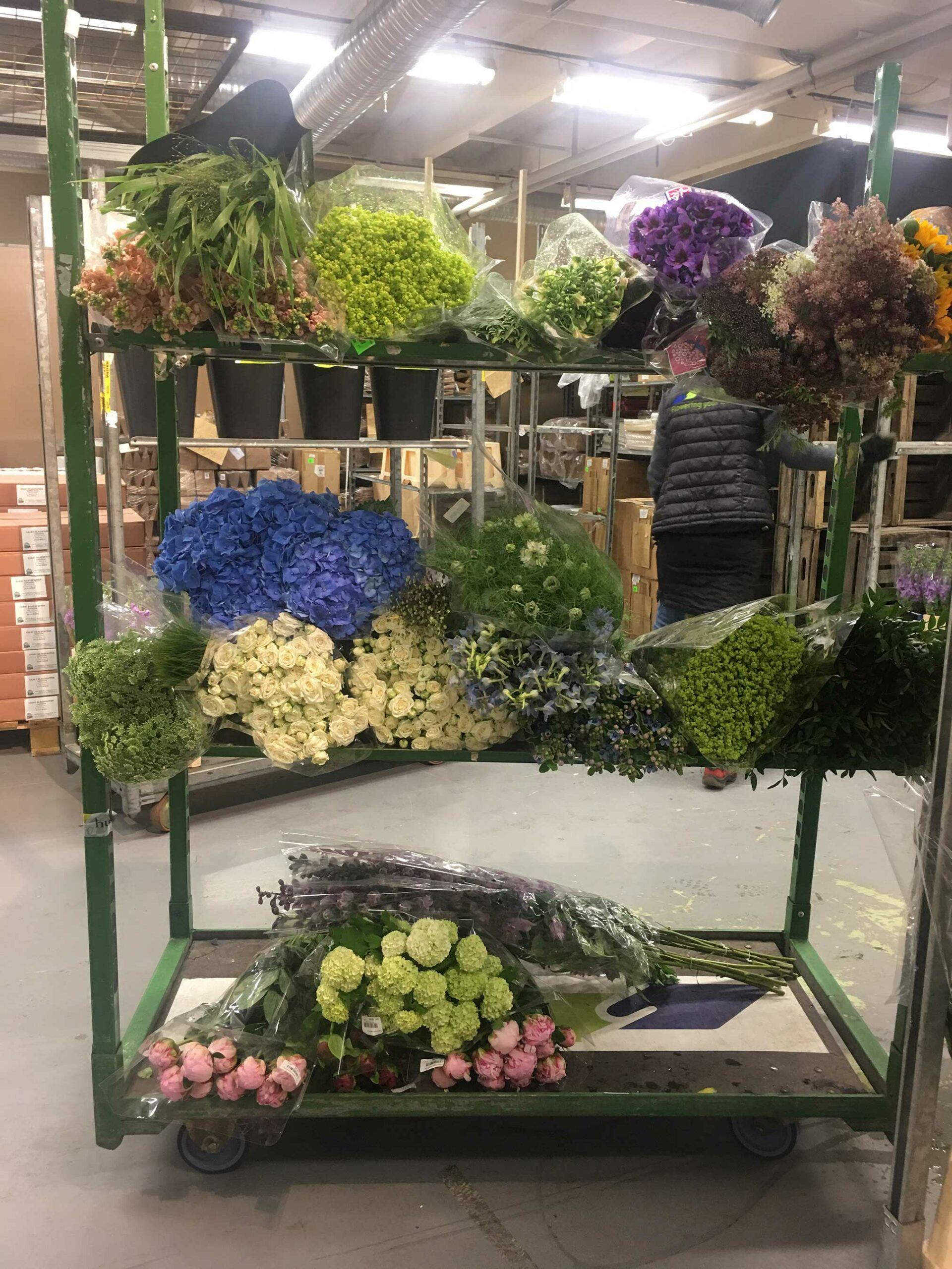 Årstapartihaller blommor inköp